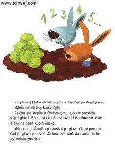 zajcka stejeta